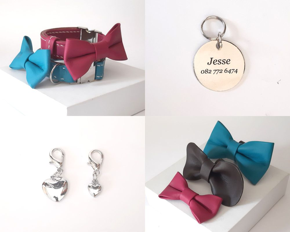 Accessories for dogs and cats